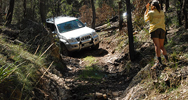 4wd vehicle sustainability for membership