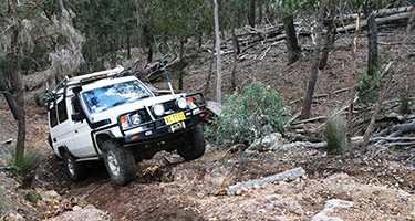 4wd driver training certificate